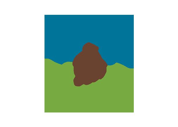 Seed sharers exchange